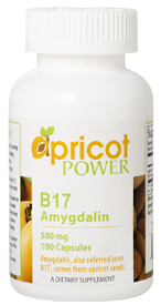 Apricot Power B17 Amygdalin, 500 mg 100 Caps