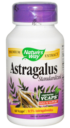 Astragalus Standardized Extract